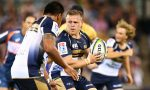 Nic Mayhew of the Brumbies