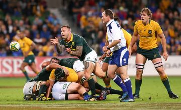 Francois Hougaard of South Africa passes the ball during The Rugby Championship match between the Australian Wallabies and the South Africa Springboks at nib Stadium o