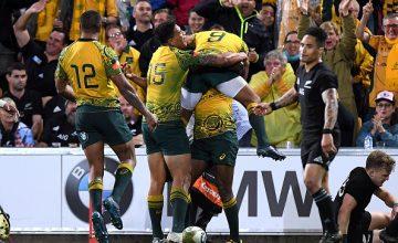 Bledisloe Cup, Australia v New Zealand