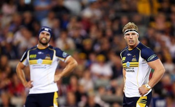 David Pocock returns for the Brumbies this week