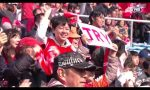 Sunwolves v Brumbies Rd.2 2018 Super Rugby Video Highlights